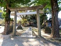 玄関から振り返れば、二の鳥居と拝殿に続く参道が。