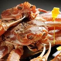 福井県の沖合で漁獲されるズワイ蟹を越前蟹といいます。
