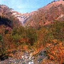 *【周辺・景観】 日本三大崩れのひとつ「大谷崩」