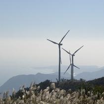 伊豆稲取細野高原 三筋山山頂から、海とすすきと風車とのコラボレーション