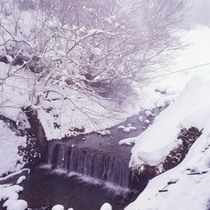 露天風呂から見える雪景色