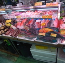 公設市場には南国特有のカラフルな鮮魚がたくさん!