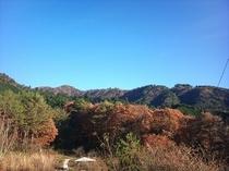 お宿からの山々