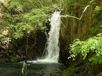 初夏の大滝
