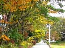 秋のアンサンブル2