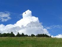 夏の牧場と入道雲