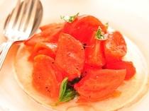 ガーリックとバジルの風味豊かなトマトサラダ