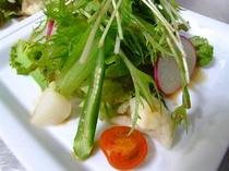 ディナー(サラダ)