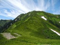 7月の石狩岳