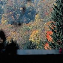 ラウンジくれおからの景色(秋)