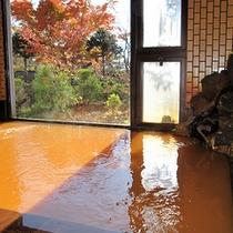 天狗温泉の鉄分の多い茶褐色の湯