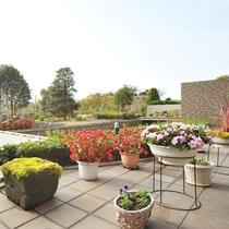 【ビジネスインうめさき】季節の花々が綺麗な庭園