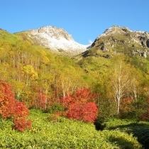 焼岳(初冠雪)