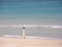 コバルトブルーの綺麗な白浜の海