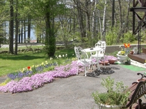 スノーバードの前庭