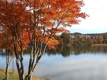 女神湖(紅葉)