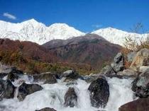 11月に入り白馬三山に冠雪です。