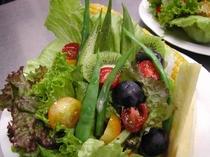 朝食イメージ 夏のtossed salad(トスサラダ・和えるサラダ)