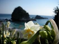 碁石ヶ浜7