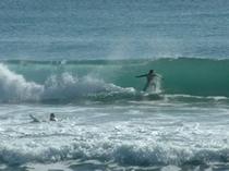 和田浦海岸はサーファーに人気のスポット