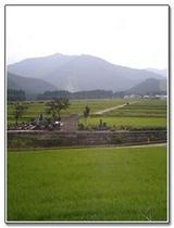 田んぼ風景4