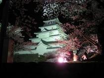 鶴ヶ城夜桜