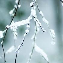 ◆あったかカイロ付 ~冬季限定~