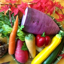 【2016年秋メニュー】色彩豊かな伊達の新鮮野菜