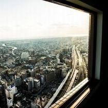 *南側客室からの眺望*