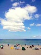 ある日の白浜の様子