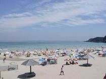 真っ白い砂浜とどこまでも透明な白浜海岸。