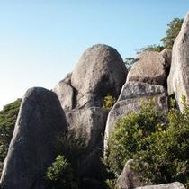 パワースポット『唐人駄場巨石群』