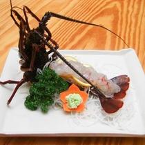 *[別注料理/伊勢エビのお造り]透き通った身が新鮮な証。近海で獲れる美味しい伊勢海老のお造り。