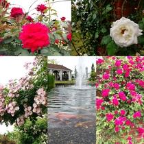 見附イングリッシュガーデン 近隣では類を見ない本格的な英国庭園様式を採用。(車で約20分)