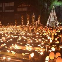 越後みしま竹あかり街道 800mの沿道に灯籠、2万個のローソク、LEDでライトアップ(車で30分)