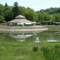 栃尾の杜々の森 名水100選の湧き水など、自然の恩恵豊かな公園です。(車で30分)