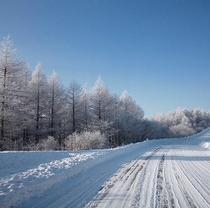 冬のビーナスラインでは雪装備必須