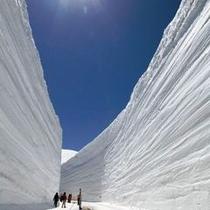 『立山黒部アルペンルート 雪の大谷』