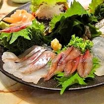 『富山湾鮮魚のお造り盛り合わせ』