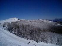 エコーバレー山頂付近