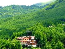緑の大自然の中
