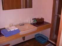 全室、洗面台付き。ドライヤーは温泉浴場に設置。