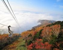 秋の紅葉シーズン、ryuoo   ski  park  オススメ!