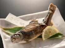 川魚の王者、岩魚(イワナ)。シンプルな塩焼きが一番おいしいです。