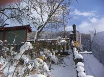平和観音、冬