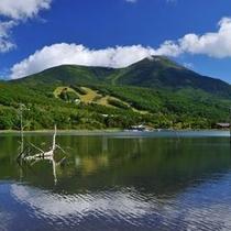 ○女神湖と蓼科山