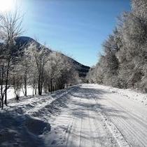 ○観光 冬景色