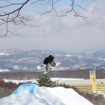 スキー(9)