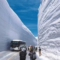 【立山黒部アルペンルート】雪の大谷にそびえ立つ雪の壁は迫力満点!