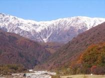 秋の紅葉白馬
